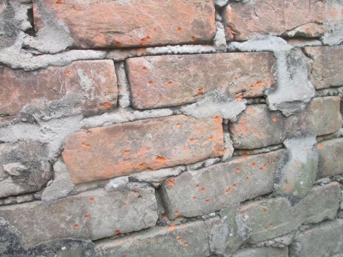 bullet wall